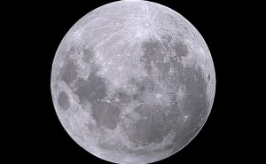 moon0019